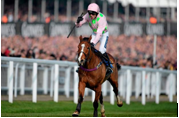 Faugheen_Machine's Avatar
